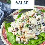 Close up side shot of a platter full of a classic Waldorf Salad recipe with text title overlay