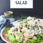 Side shot of Waldorf salad on a plate with text title overlay
