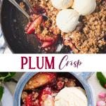 Long collage image of plum crisp