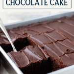 Pan of one bowl chocolate cake with text title box at top