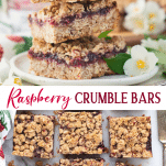 Long collage of raspberry crumble bars