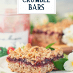 Close up side shot of raspberry oatmeal bars on a plate with text title overlay