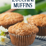 Close up side shot of a zucchini muffin with text title overlay