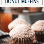 Close up shot of apple cider donut muffins on a wooden tray with text title box at top