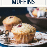 Side shot of a cranberry muffin on a plate with text title box at top