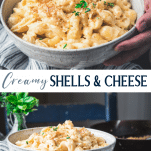 Long collage image of shells and cheese recipe