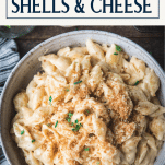Overhead shot of a bowl of the best macaroni and cheese shells with text title box at top