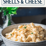 Close up side shot of a bowl of homemade shells and cheese with text title box at top