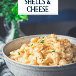 Close up side shot of a big bowl of mac and cheese shells recipe with text title overlay