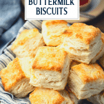 Close up shot of homemade biscuits with text title overlay