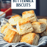 Close up side shot of a bowl of homemade flaky buttermilk biscuits with text title overlay