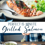 Long collage image of grilled salmon