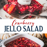 Long collage image of cranberry jello salad.